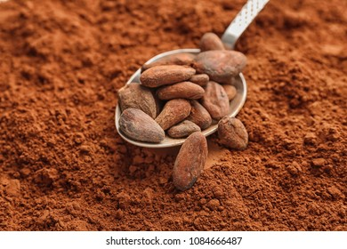 Spoon with beans on cocoa powder