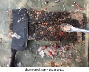 Spoon cooking dirt