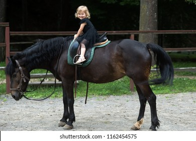 Sport, activity, entertainment. Child smile in rider saddle on animal back. Equine therapy, recreation concept. Friend, companion, friendship. Girl ride on horse on summer day. riding school