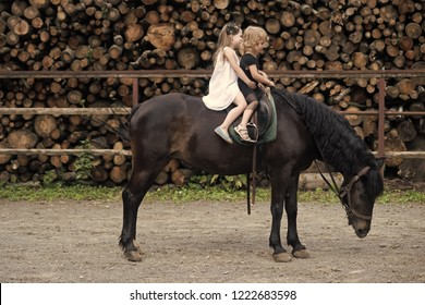 Sport, activity, entertainment. Girls ride on horse on summer day. Friend, companion, friendship. Children sit in rider saddle on animal back. Equine therapy, recreation concept. riding school