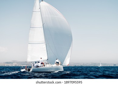 Sport boat with a white sail on regatta, rear view