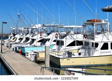 Sport fishing boats moored at marina Florida, USA