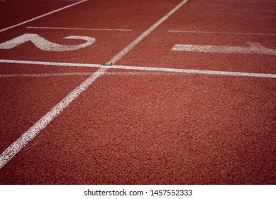 Sport. A red treadmill or athletics track at the stadium. Copy space