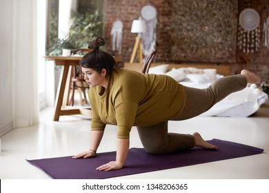 Sports, activity, fitness and weight loss concept. Indoor image of concentrated self determined young plus size woman in leggings and t-shirt exercising on mat, lifting one leg, trying to hold balance