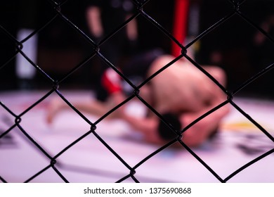 Sports concept of fighting without rules. Two athlete wrestlers in the arena of the octagonal scene. Mood fights without boxing rules MMA. Alternative look at sporting battles through the metal cage