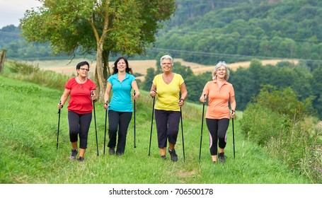 sports outside in nature, elderly woman nordic walking group