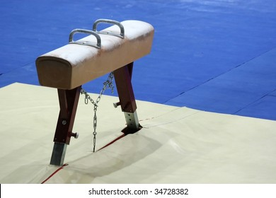Sports pommel in gym isolated.