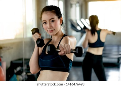 sportswoman working in a gym. Woman training using dumbbell. Sports and athletic fitness concept