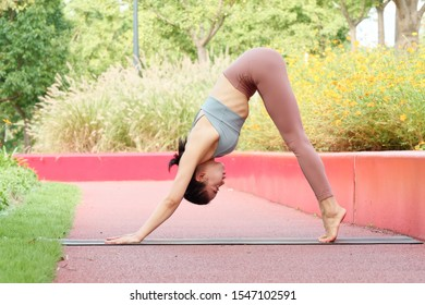 Sporty attractive woman practicing yoga barefoot on the mat, working out, wearing sportswear, pants and top, standing in Downward facing dog exercise adho mukha svanasana pose, full length portrait.
