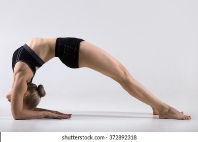 Sporty beautiful young woman practicing yoga, doing variation of Bridge Pose on elbows, Two-Legged Inverted Staff yoga Pose, Dvi Pada Viparita Dandasana, working out wearing black sportswear, studio