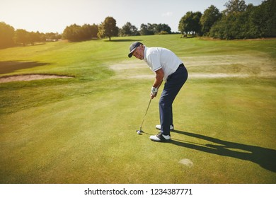Sporty senior man standing on a green about to putt while playing a round of golf on a sunny day