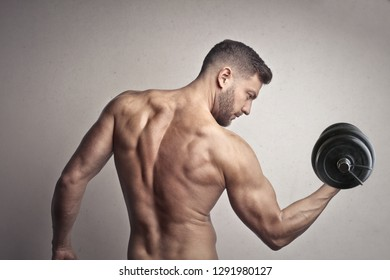 Sporty sexy man showing his muscles and lifting weight.