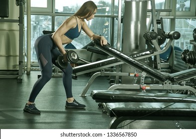 sporty woman builds muscle arms and chest on the simulator in the gym.Beautiful girl doing exercises, holding dumbbells in the gym