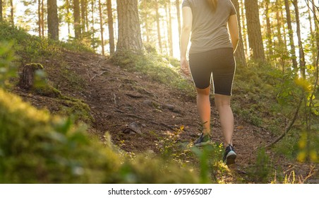 Sporty young woman walking in forest path at sunset. Summer night in nature at dawn. Sun shining. Girl hiking in the woods. Fitness, healthy lifestyle and weight loss concept.