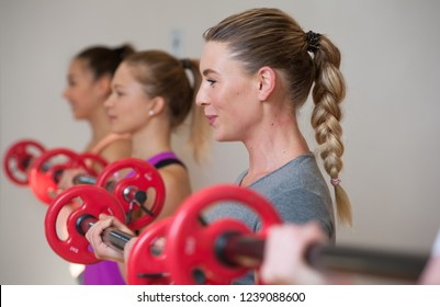 Sporty young women training with barbells in fitness class. Group exercise in modern fitness center. Shallow depth of field