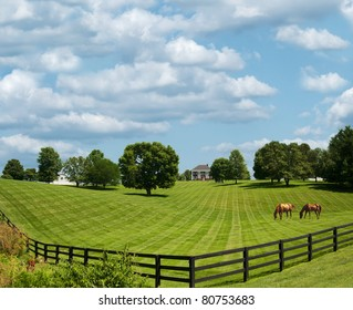 Sprawling acres of fenced in green pastures surround a horse farm ranch in Kentucky, USA.