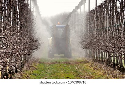 A sprayer machine sprinkles pesticides in an apple orchard in the first days of springtime. Back view