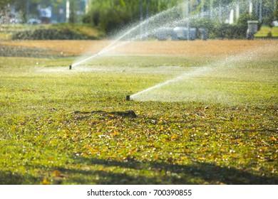Sprayer for watering grass