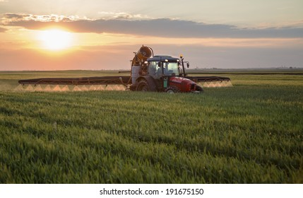 Spraying field of green crops at sunset