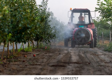 Spraying trees in fruit orchard against insect and deceases