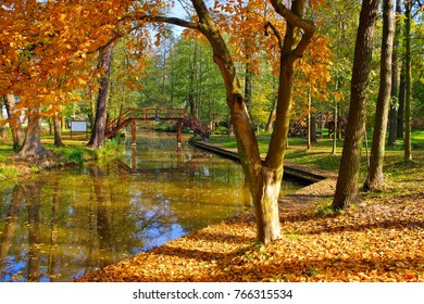 Spree Forest harbour in Raddusch in fall