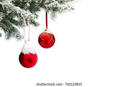 Sprig of christmas tree (spruce Picea pungens) with of hanging balls covered hoarfrost and in snow on a white background with space for text