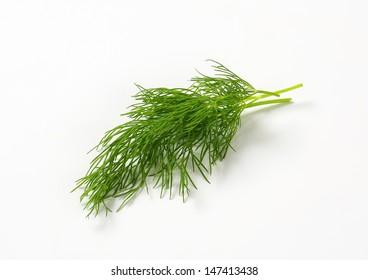 sprig of fresh dill