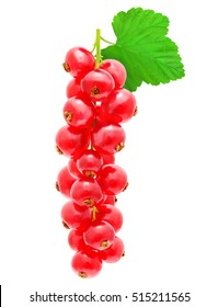 Sprig of red currant with leaf isolated on a white background.