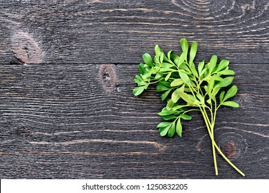Sprigs of fresh green rue on a black wooden board background
