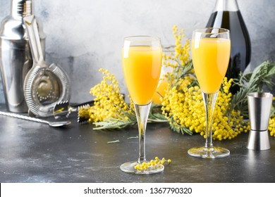 Spring alcohol cocktail mimosa with orange juice and cold dry champagne or sparkling wine in glasses, gray bar counter background with yelow flowers, copy space, selective focus