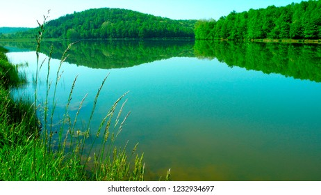 Spring along Big Ditch Lake, Cowen, USA, West Virginia, Webster County