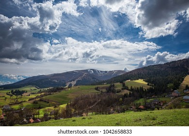 Spring alpine meadows