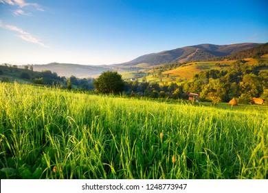 Spring alps landscape with green hills. Fresh green grass with morning dew in sunshine. Spring mountain background. Alps, Italy.