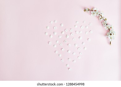 Spring background. Apricot branch and fallen petals laid out in the shape of heart on pink background. Flat lay. Sakura branch.