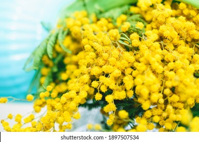 Spring background with a bouquet of mimosa.