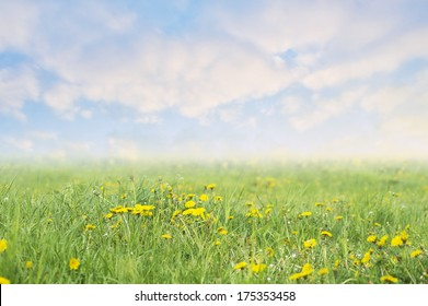 spring background with dandelions and blue sky