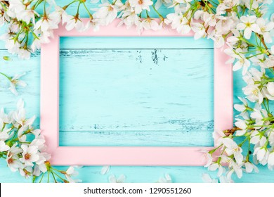 Spring background with an empty pink picture frame surrounded by white cherry blossom flowers and branches on turquoise wooden planks. Flat lay