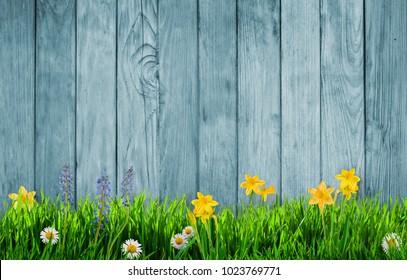 Frühlingshintergrund mit Blumen