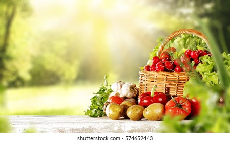 Spring background of fresh vegetables and wooden table in garden