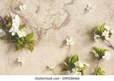 Spring background with  pear blossom flowers, top view, copy space, springtime concept. Greeting card or wedding invitation