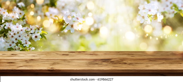 Spring background with white blossoms and sunbeams in front of a wooden table