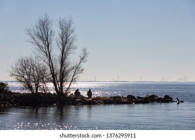 Spring backlight silhouet of breakwater in sparkling sea with two boys relaxing in the sun sitting at the stones near a bare tree