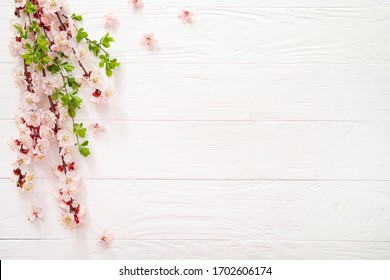 Spring blooming branches on white wooden background. Copy space. Top view.