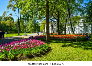 Spring blooming park tulip blossom landscape. Tulip festival in spring blooming Saint Petersburg, Russia. Beautiful spring blooming tulip flowers. Spring tulip festival in Saint Petersburg, Russia