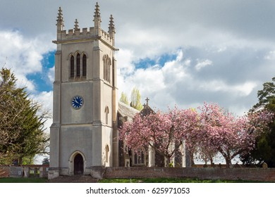 Spring blossom on a tree outside Ickworth church at Ickworth in Suffolk.