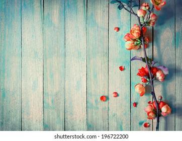 Wooden Background Images, Stock Photos & Vectors | Shutterstock