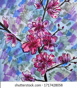 Spring blossom pink flowers watercolor drawing