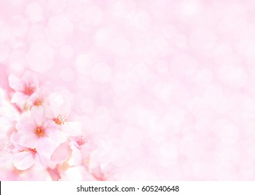 Pink flowers background images stock photos vectors shutterstock spring blossomspringtime cherry bloom toned bokeh flower background pastel and soft mightylinksfo