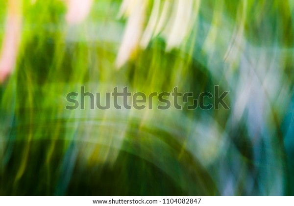 Spring blurred flowers. Abstract motion blur effect.