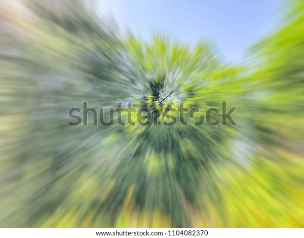 Spring blurred tree. Abstract motion blur effect.